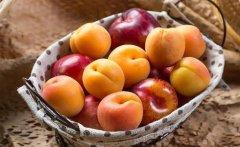200个水果网名_带水果的网名大全