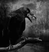 鬼魅恐怖有点丧的网名大全 灵魂抽离身体
